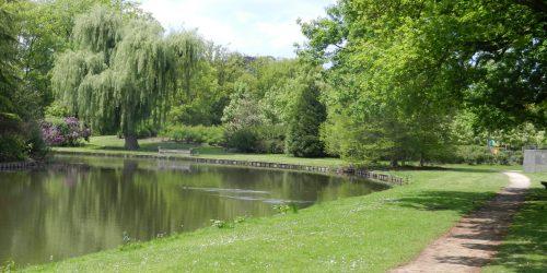 Heerlijk wandelen in Recreatiepark de Kienehoef