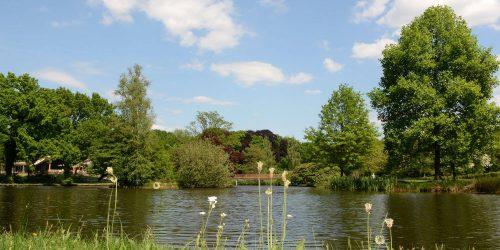Recreatiepark de Kienehoef in het Brabantse Sint-Oedenrode