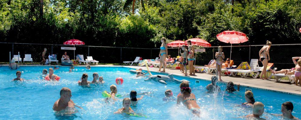 Camping Brabant met zwembad