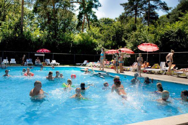 Heerlijk zwemmen in het zwembad op de Kienehoef in Sint-Oedenrode